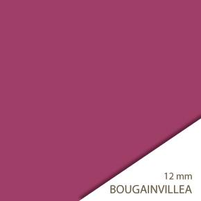 04bougainvillea